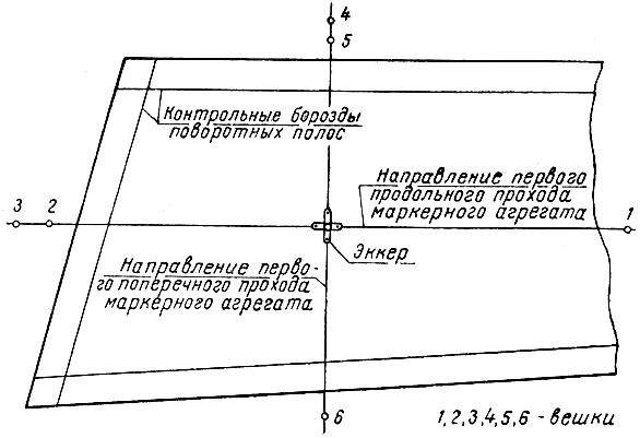 Схема разбивки поля