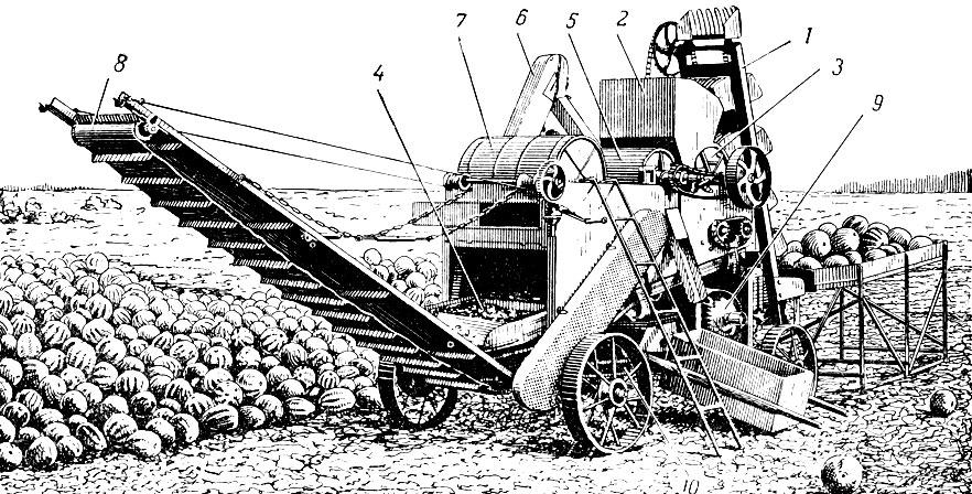 Выделитель семян из арбузов и