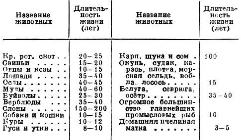 http://agrolib.ru/rastenievodstvo/item/f00/s00/e0000328/pic/000000.jpg