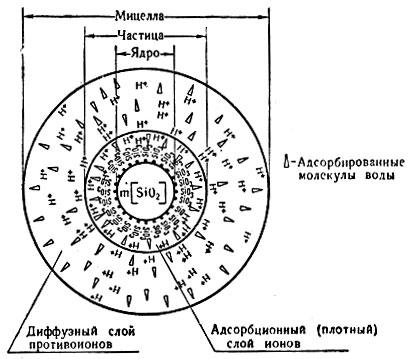 Схема строения мицеллы