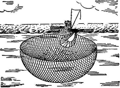 Рыбалка Сены